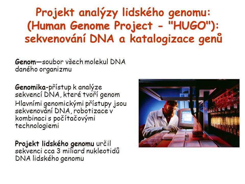 Projekt analýzy lidského genomu: (Human Genome Project - HUGO ): sekvenování DNA a katalogizace genů