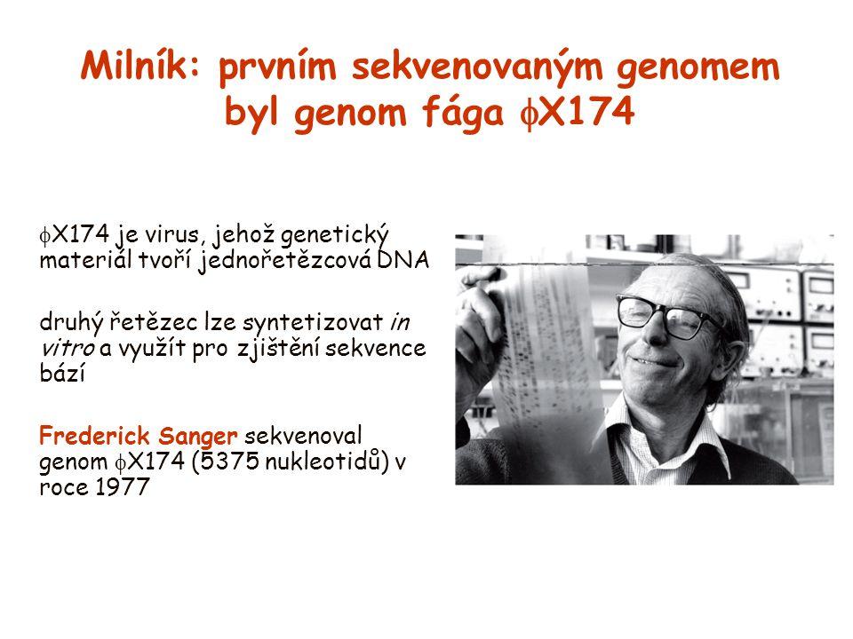 Milník: prvním sekvenovaným genomem byl genom fága X174