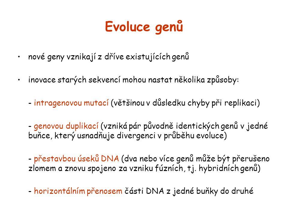 Evoluce genů nové geny vznikají z dříve existujících genů