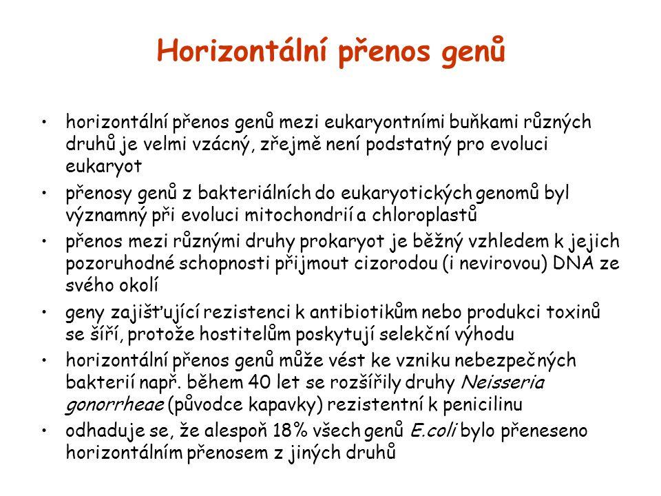 Horizontální přenos genů