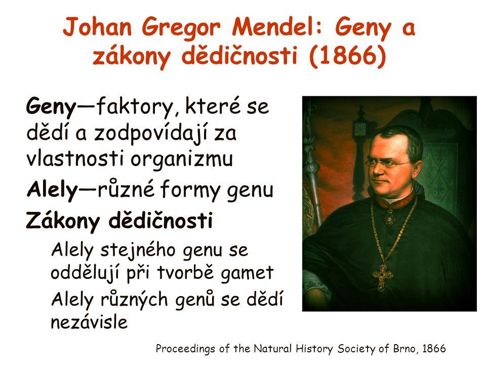 Johan Gregor Mendel: Geny a zákony dědičnosti (1866)