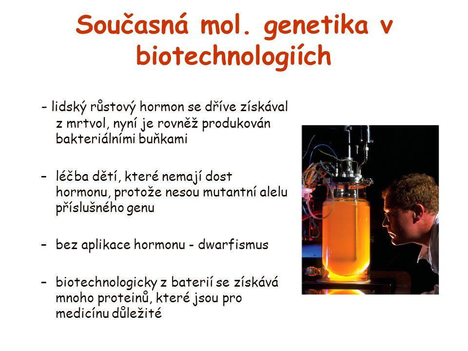 Současná mol. genetika v biotechnologiích