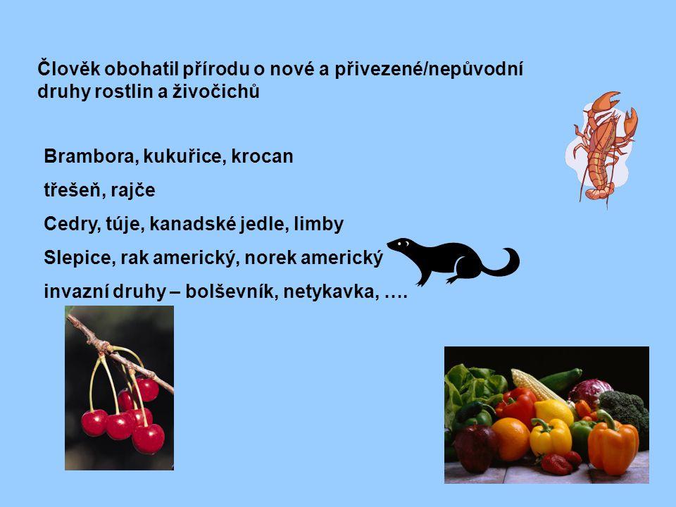 Člověk obohatil přírodu o nové a přivezené/nepůvodní druhy rostlin a živočichů