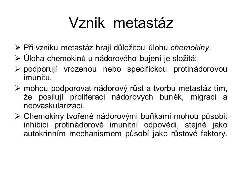 Vznik metastáz Při vzniku metastáz hrají důležitou úlohu chemokiny.