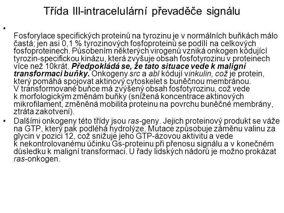 Třída III-intracelulární převaděče signálu