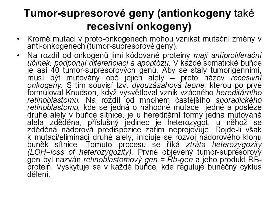 Tumor-supresorové geny (antionkogeny také recesivní onkogeny)