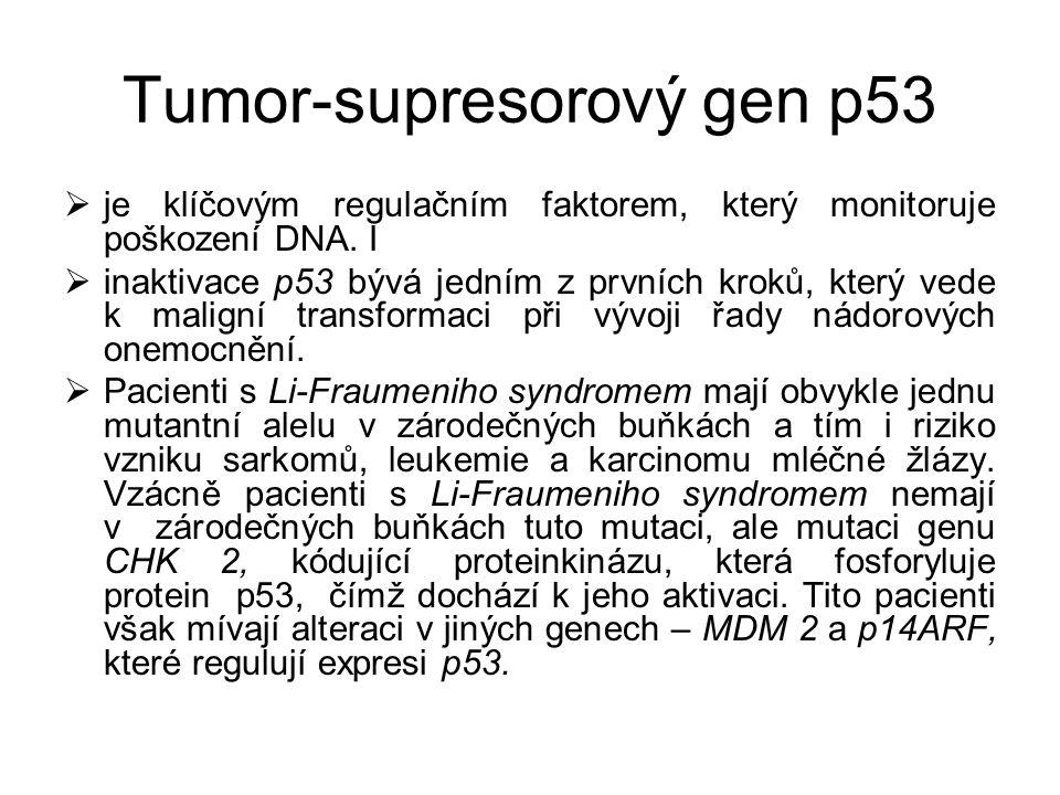 Tumor-supresorový gen p53