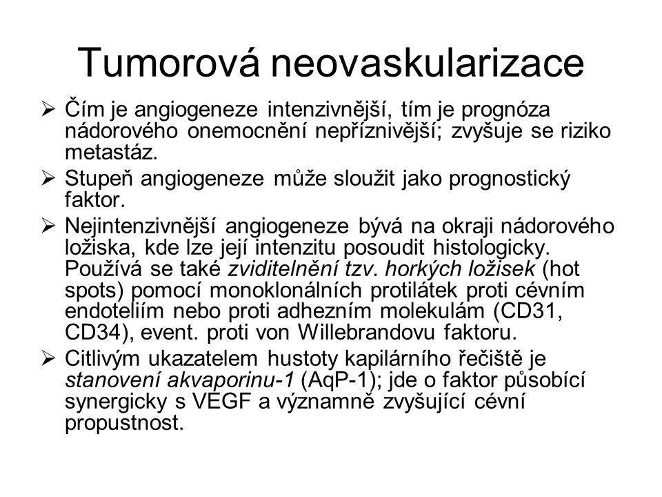 Tumorová neovaskularizace