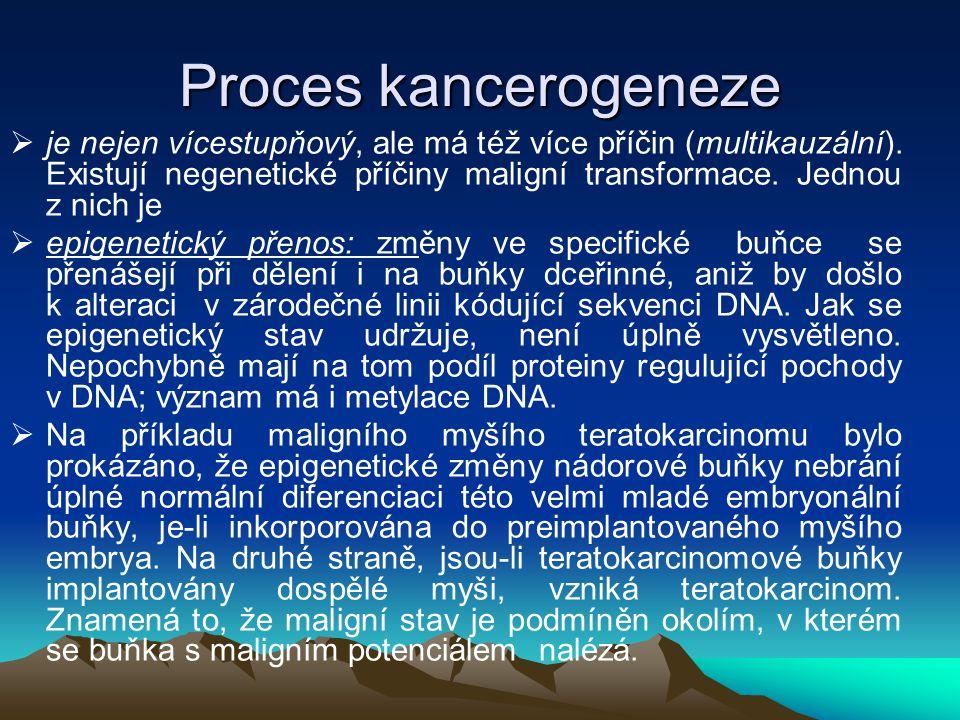 Proces kancerogeneze