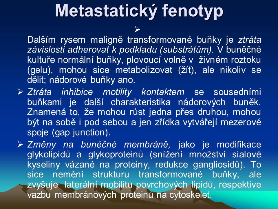 Metastatický fenotyp