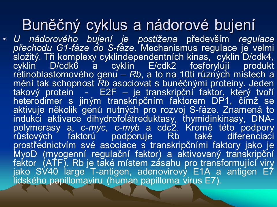 Buněčný cyklus a nádorové bujení