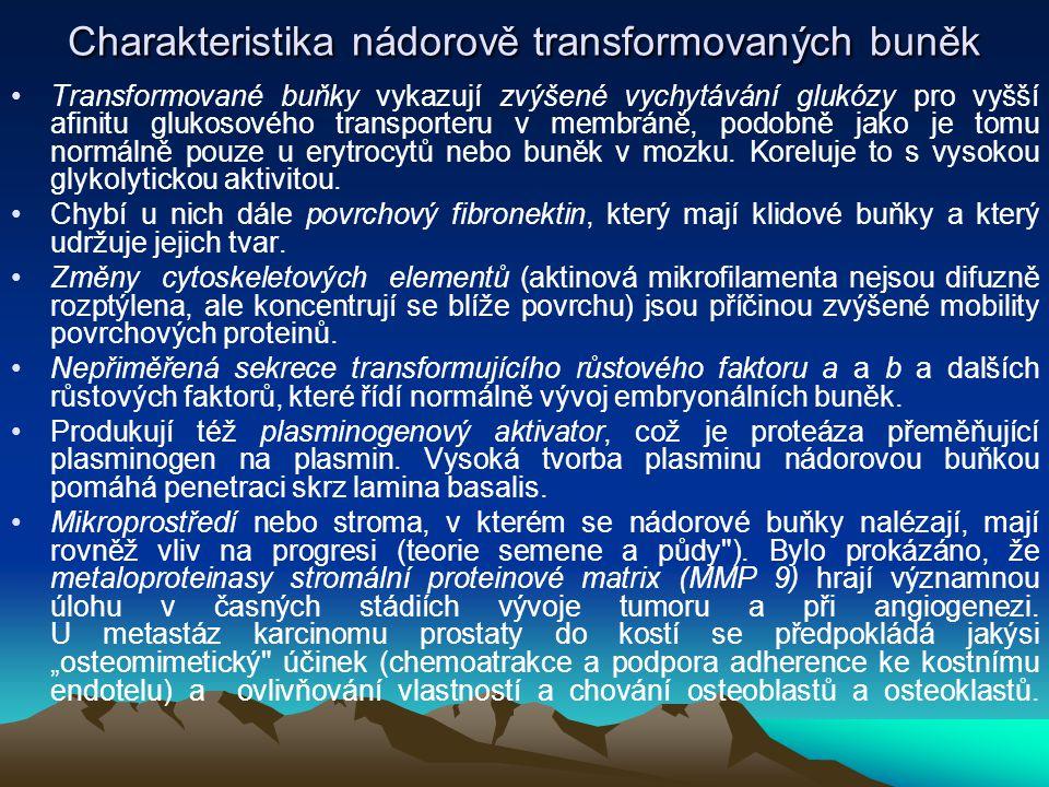 Charakteristika nádorově transformovaných buněk