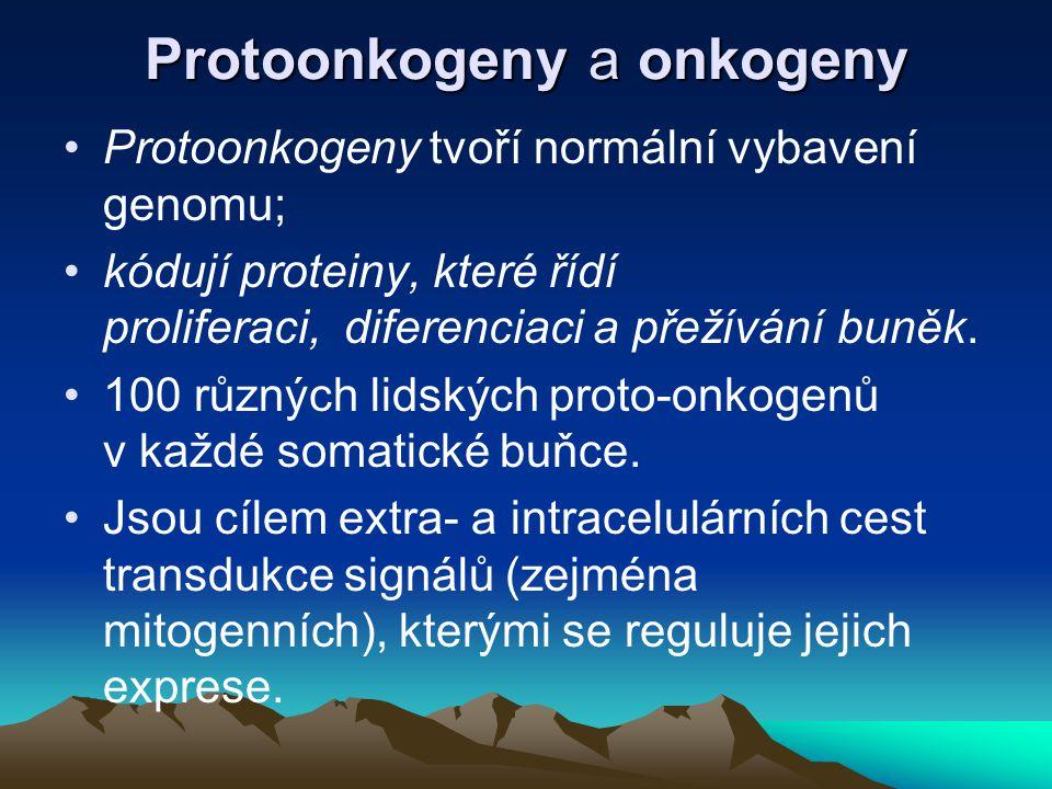 Protoonkogeny a onkogeny