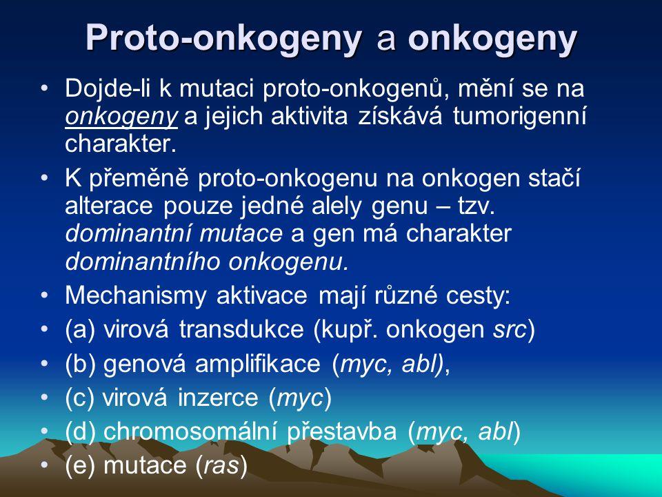 Proto-onkogeny a onkogeny