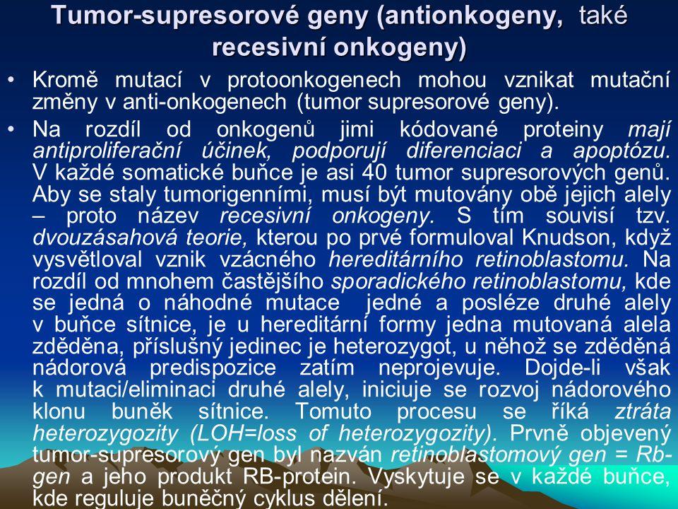 Tumor-supresorové geny (antionkogeny, také recesivní onkogeny)