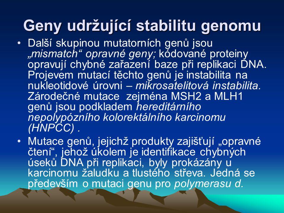Geny udržující stabilitu genomu