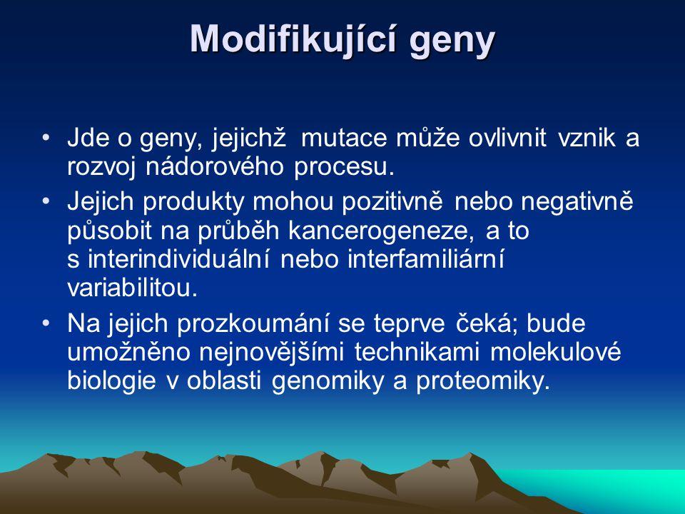 Modifikující geny Jde o geny, jejichž mutace může ovlivnit vznik a rozvoj nádorového procesu.