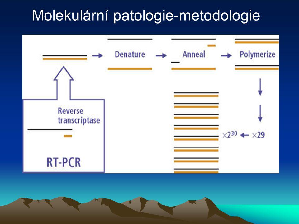 Molekulární patologie-metodologie