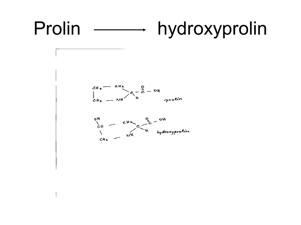 Prolin hydroxyprolin