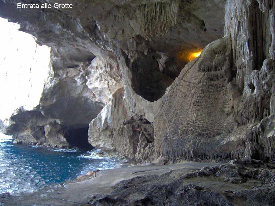 Entrata alle Grotte