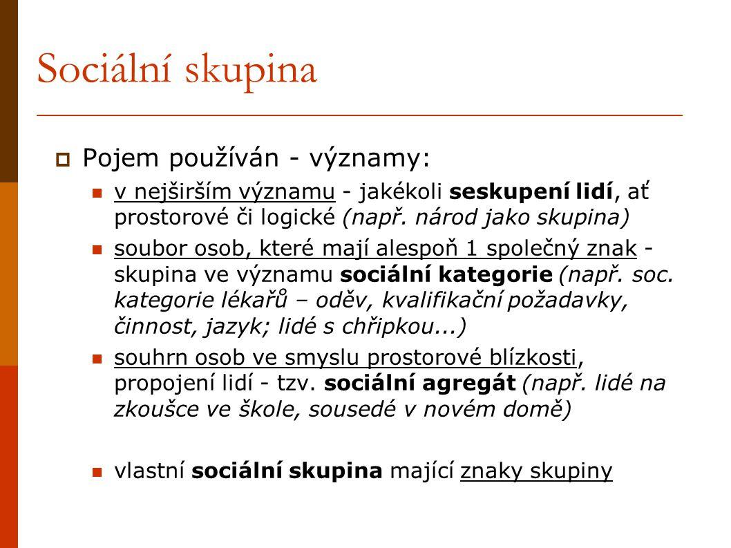Sociální skupina Pojem používán - významy:
