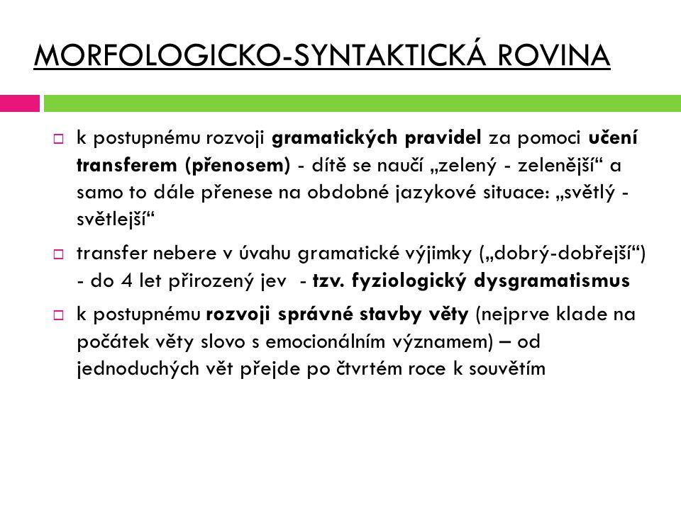 MORFOLOGICKO-SYNTAKTICKÁ ROVINA