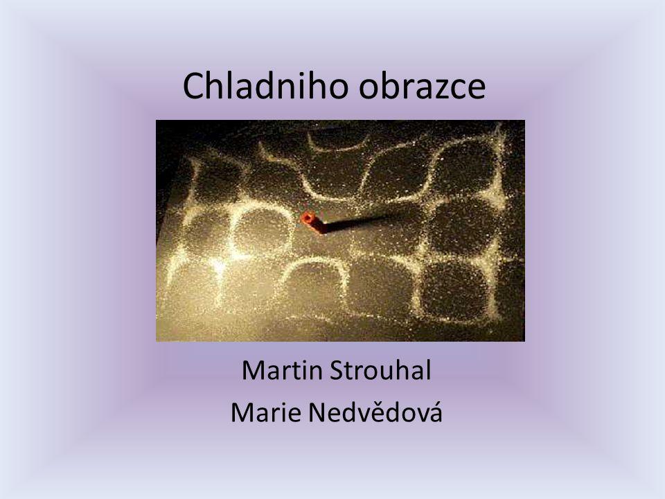 Martin Strouhal Marie Nedvědová
