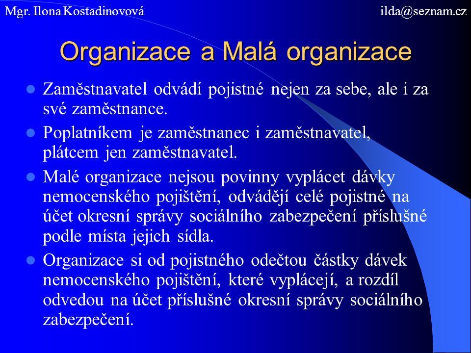 Organizace a Malá organizace