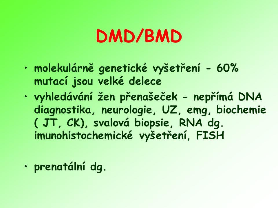 DMD/BMD molekulárně genetické vyšetření - 60% mutací jsou velké delece