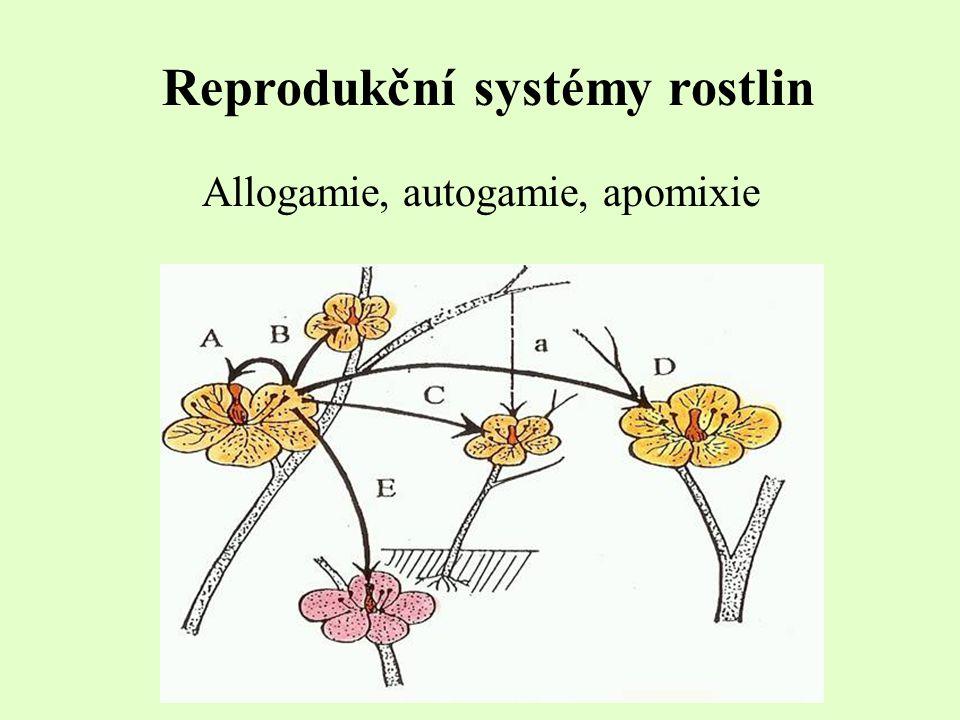Reprodukční systémy rostlin