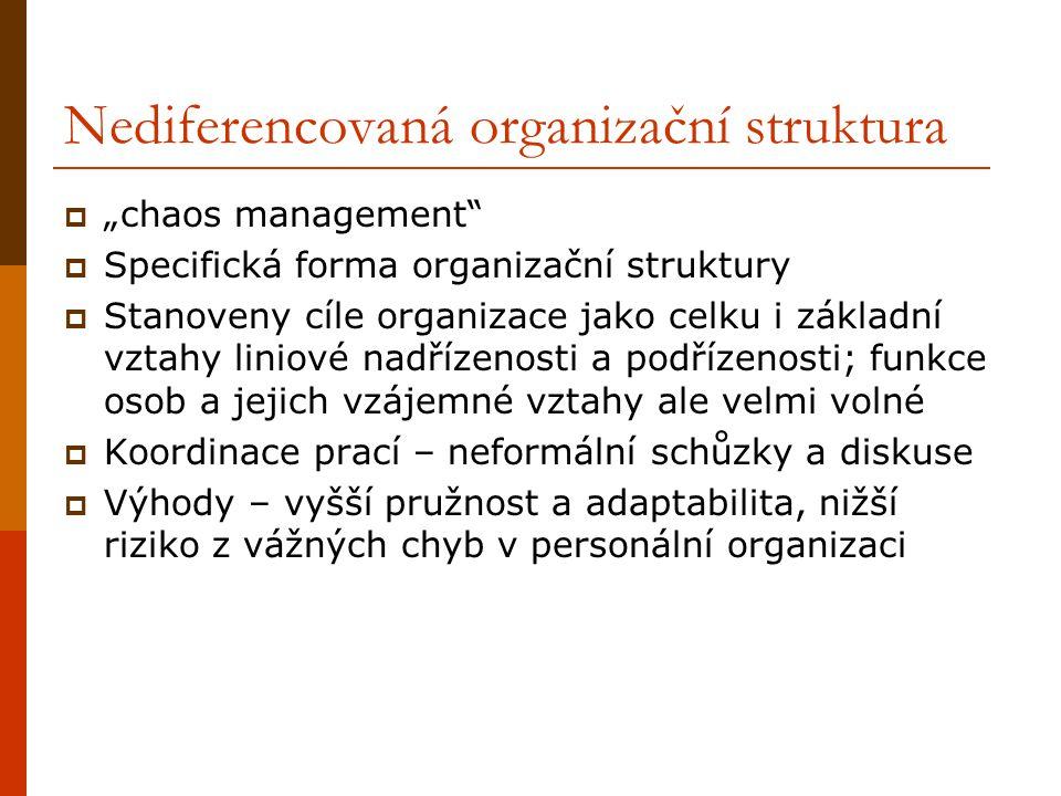 Nediferencovaná organizační struktura