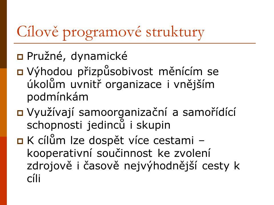 Cílově programové struktury