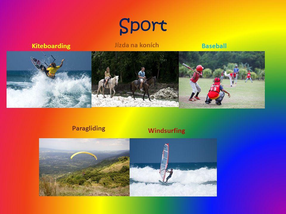Sport Jízda na koních Kiteboarding Baseball Paragliding Windsurfing