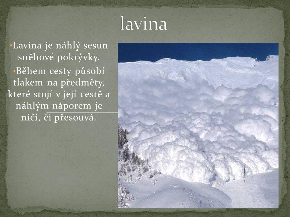 Lavina je náhlý sesun sněhové pokrývky.
