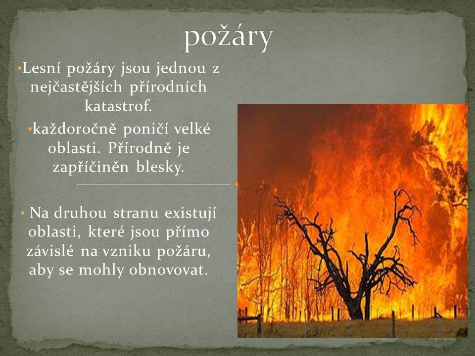 požáry Lesní požáry jsou jednou z nejčastějších přírodních katastrof.