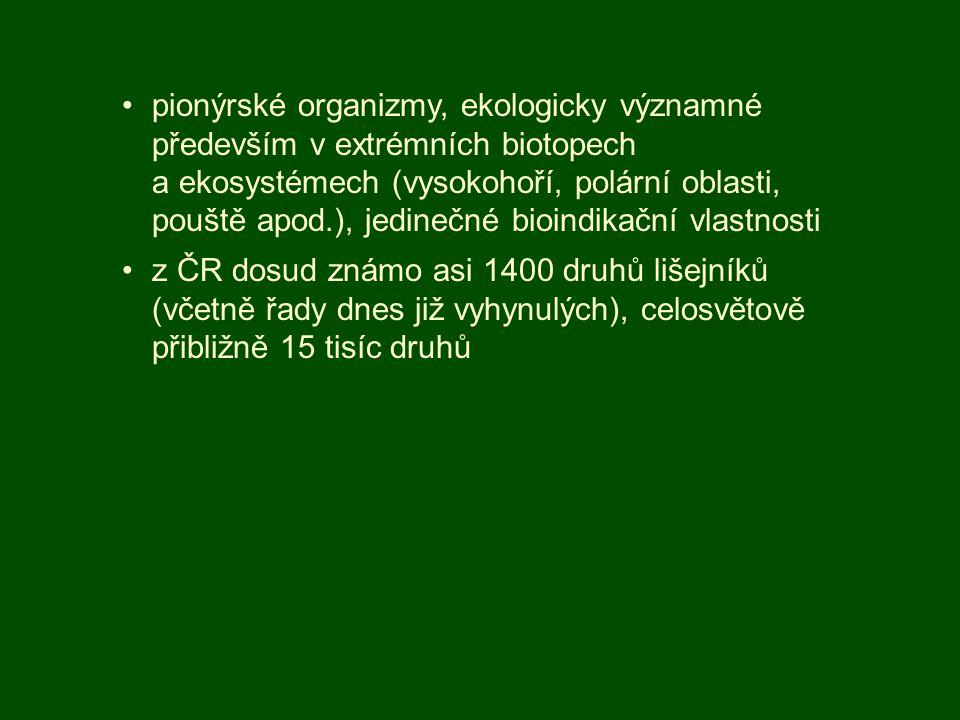 pionýrské organizmy, ekologicky významné především v extrémních biotopech a ekosystémech (vysokohoří, polární oblasti, pouště apod.), jedinečné bioindikační vlastnosti
