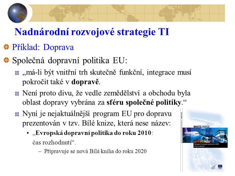 Nadnárodní rozvojové strategie TI