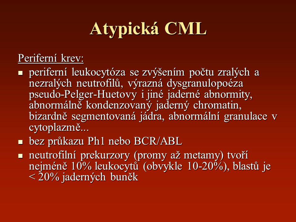 Atypická CML Periferní krev: