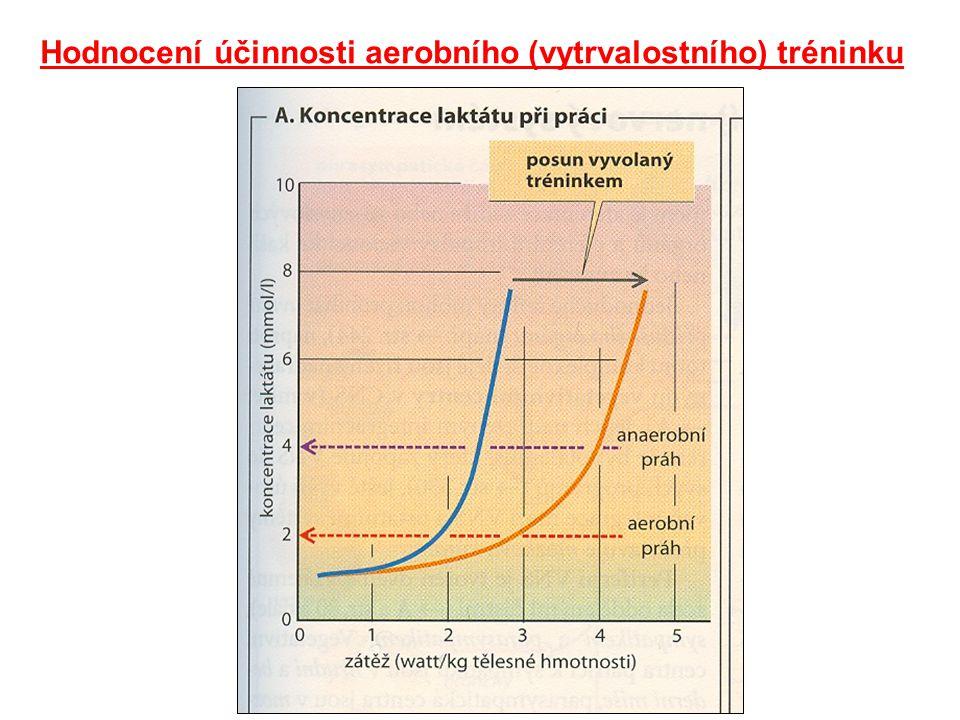 Hodnocení účinnosti aerobního (vytrvalostního) tréninku