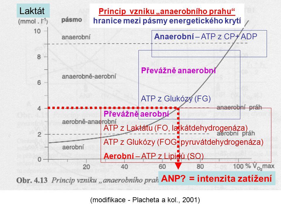 ANP = intenzita zatížení