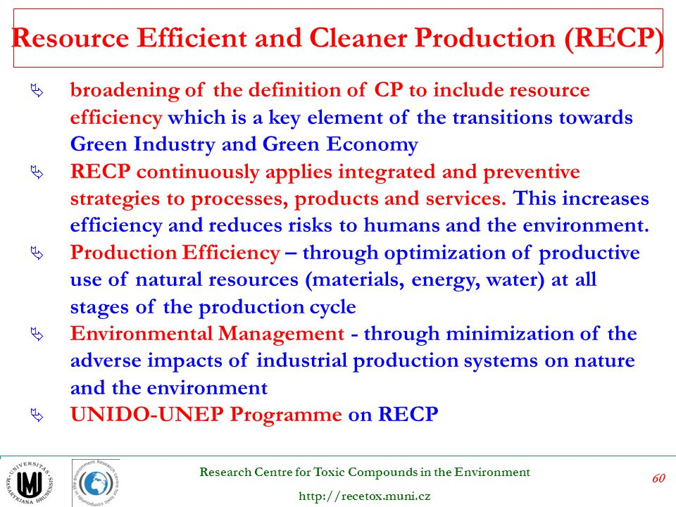 Resource Efficient and Cleaner Production (RECP)