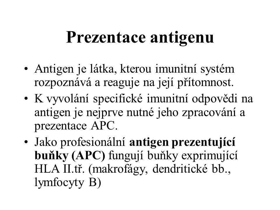 Prezentace antigenu Antigen je látka, kterou imunitní systém rozpoznává a reaguje na její přítomnost.