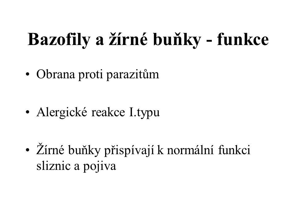 Bazofily a žírné buňky - funkce