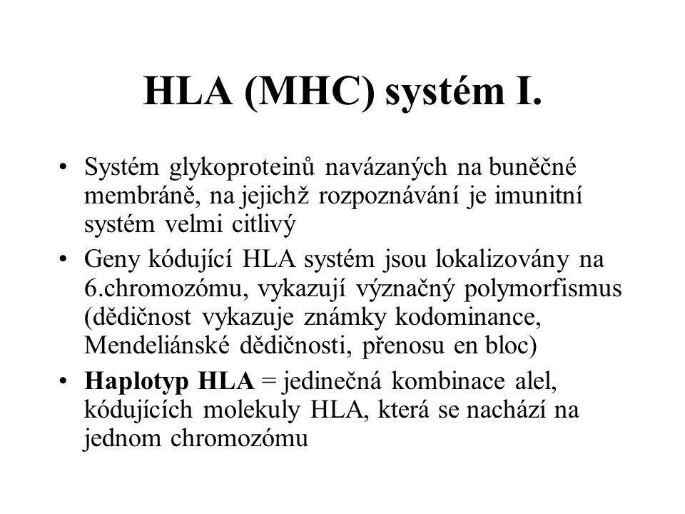 HLA (MHC) systém I. Systém glykoproteinů navázaných na buněčné membráně, na jejichž rozpoznávání je imunitní systém velmi citlivý.