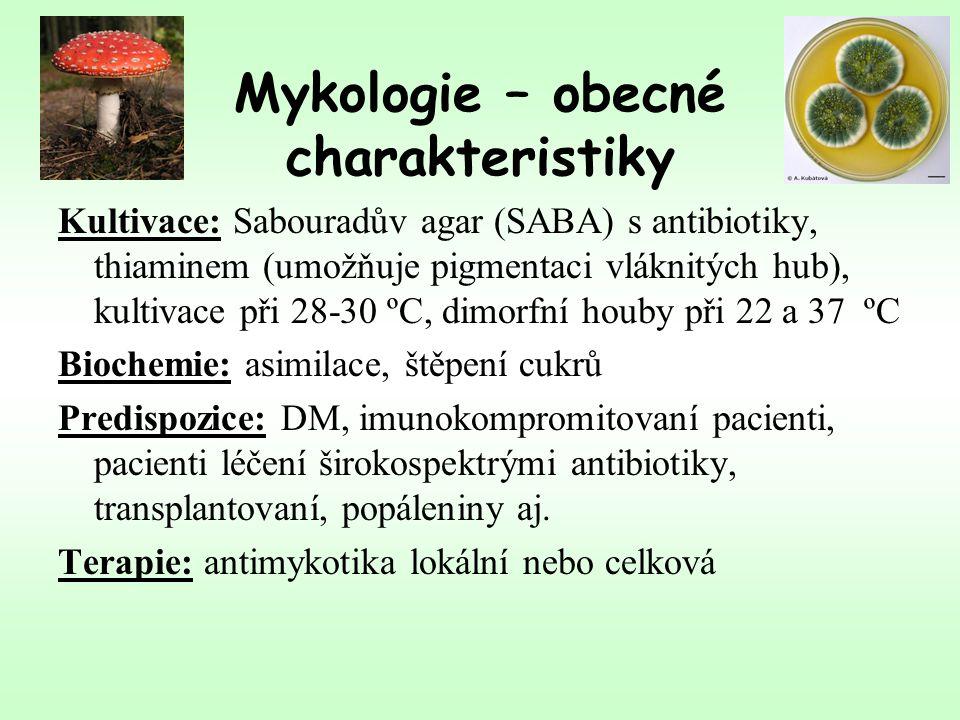 Mykologie – obecné charakteristiky