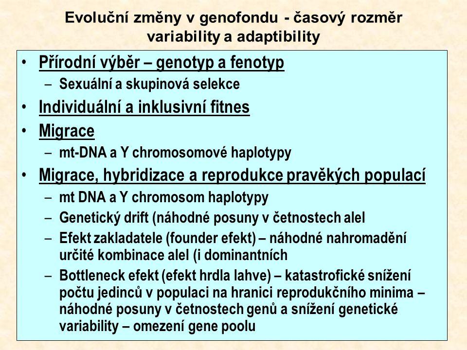 Evoluční změny v genofondu - časový rozměr variability a adaptibility