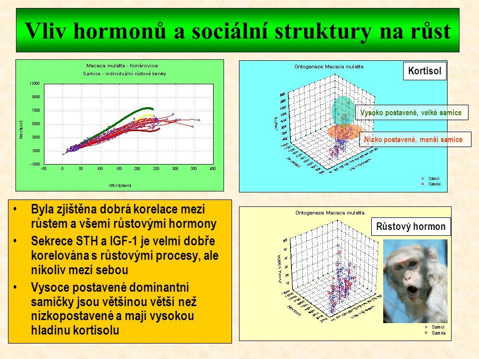 Vliv hormonů a sociální struktury na růst