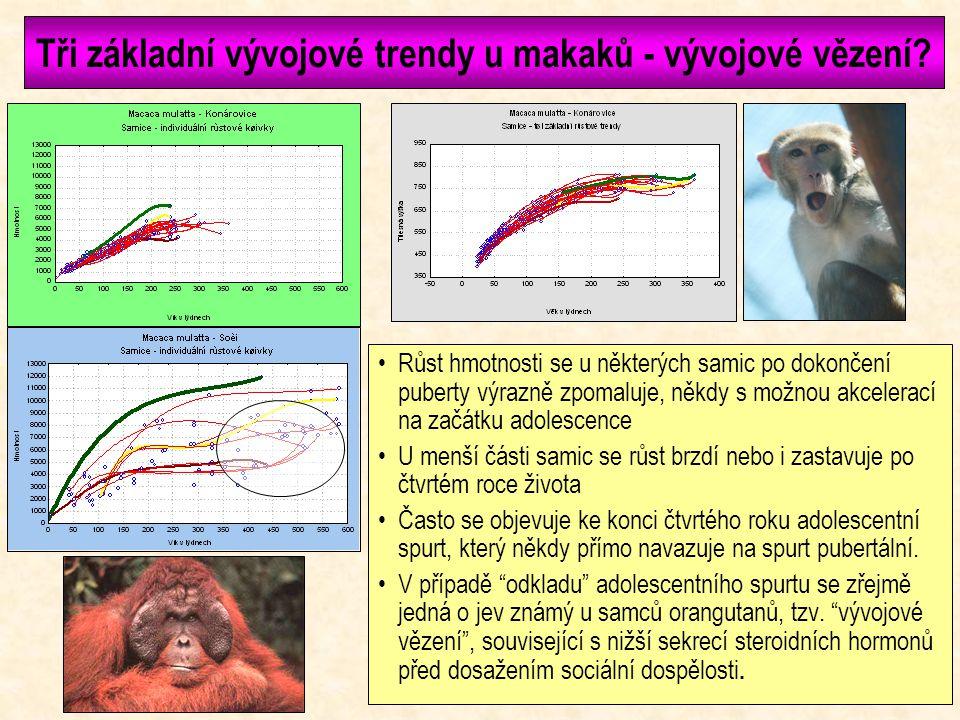 Tři základní vývojové trendy u makaků - vývojové vězení