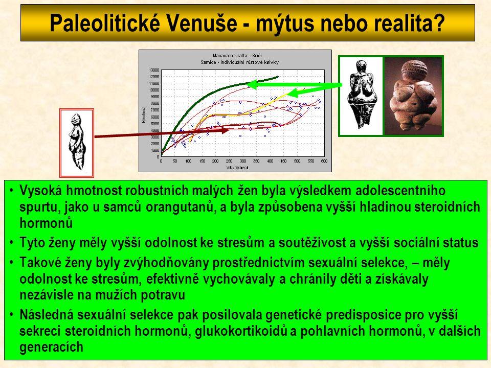 Paleolitické Venuše - mýtus nebo realita