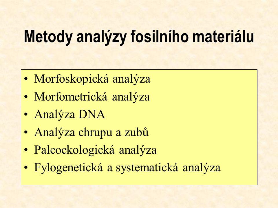 Metody analýzy fosilního materiálu